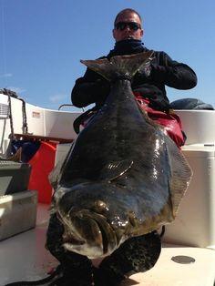 The Big Fish :)  © www.lofoten-fishing.de