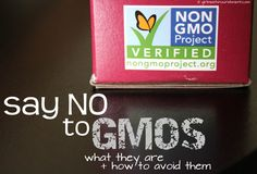 Say No to GMOs What They Are and How to Avoid Them