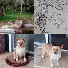 Küçük kızım Şiva #aysunberktayözmen #şiva#köpek #küçükkızım #animal #illustration #doğa #natureart #artdrawing #garden #nicea #göl #çocuklar #hayvanlar