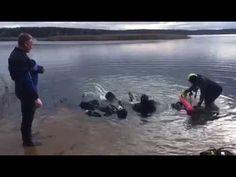 Как мы сдавали экзамен по спасению утопающих - YouTube