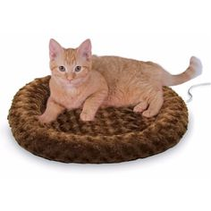 K&H Pet Products Thermo-Kitty Fashion Splash Small Mocha Heated Cat Bed Heated Cat Bed, Cat In Heat, Outdoor Cats, Cat Accessories, Cat Supplies, Cool Cats, Cats And Kittens, Tabby Cats, Cat Lovers