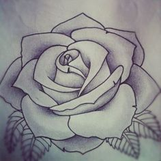 Best 25+ Rose outline ideas on