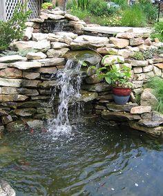 natural looking fish pond