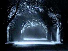 Akşamlar ve Geceler