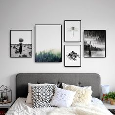 Room Decor, Decor, Bed Decor, Bedroom Decor, Apartment Decor, Nature Wall Decor, Wall Behind Sofa, Home Decor, Gallery Wall Layout