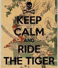 ORAGES D'ACIER: Chevaucher le tigre