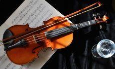 Beautiful Violin Wallpaper Photo Free Download Wallpaper 1920x1200 px 791.65 KB