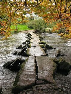 Autumn, Tarr Steps, Devon, England. Our tips for 25 fun things to do in England: http://www.europealacarte.co.uk/blog/2011/08/18/what-to-do-england/