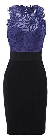 Dress of the Day: Karen Millen embroidered pencil dress >> The Fashion Police