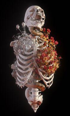 † Blossom † on Behance Kunst Inspo, Art Inspo, Frida Art, Skeleton Art, Skeleton Drawings, Human Skeleton, Skull Art, Aesthetic Art, Aesthetic Wallpapers