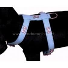 Resultado de imagen para arneses para perros pequeños