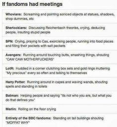Basically, this sums up Fandoms.