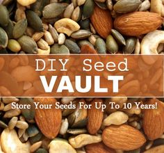 DIY Seed Vault - how to store your seeds for up to 10 years!! #gardening #homesteading