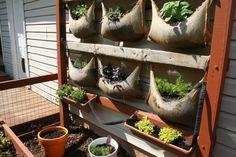 burlap or seed sacks = planters