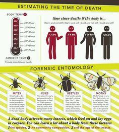 Crime Scene Science