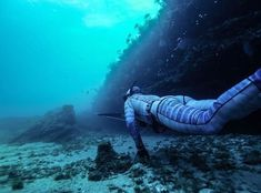On the Hunt. Pesca Sub, Deep Sea, Deep Blue, Beautiful Places To Travel, Snorkeling, Scuba Diving, Under The Sea, Underwater, Spear Fishing
