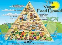 Six Tips: How to Go Vegan or Vegetarian in 2013