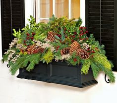 Preppy Empty Nester: Yuletide Windowboxes