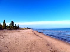 The Pinery near Grand Bend, Ontario, Canada. Image by Brad Scrinko.