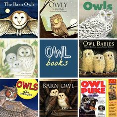 owl books... Beginnings of character study, author perspective & research?