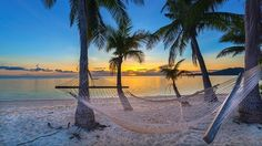 Picture of Tropical paradise beach at sunset with hammock stock photo, images and stock photography. Beautiful Places To Travel, Best Places To Travel, Places To Visit, Fiji Culture, Fly To Fiji, Visit Fiji, Fiji Beach, Honeymoon Island, Beautiful Sunrise