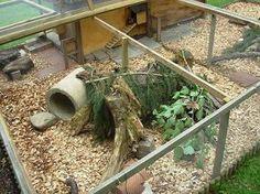 nice rabbit hutch