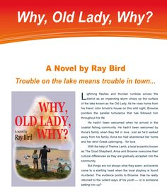 Synopsis for Why, Old Lady, Why? A novel by Ray Bird