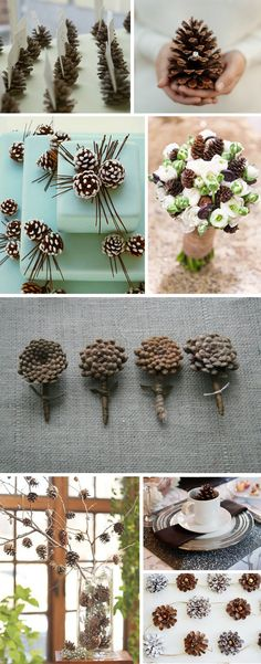 DIY Pinecones ~ many other pinecone crafts