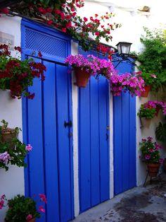 Blue garden doors