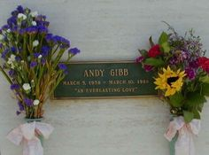 Andy Gibb - Forest Lawn Memorial Park, Hollywoods Hills, CA