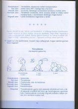 Album Archive - Tág a világ (Mozgásfejlesztés játékosan) Bullet Journal, Album, Card Book