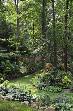Slope shade garden