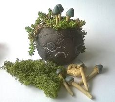 terrarium art stoneware toadstools by little brick house ceramics . Porcelain Clay, Stoneware Clay, Mushroom Chair, Outdoor Pots, Color Glaze, Rustic Gardens, Foliage Plants, Compost, Terrarium
