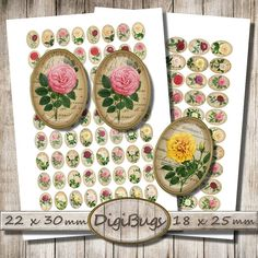 Beetle Ovals Digital Collage Sheet 18 x 25 mm 22 x 30 by DigiBugs Cosmos, Lilac Roses, Pattern Mixing, Vintage Roses, Collage Sheet, Diy Earrings, Digital Collage, Holiday Decor, Handmade Gifts