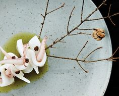 Squid w/ juniper from Actinolite Restaurant in Toronto | Chefs Feed