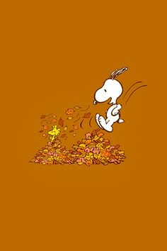 snoopy fall pictures - We show you beautiful snoopy fall pictures ideas for half-length hair and medium-length hairstyles. Furthermore, we provide techniques Sf Wallpaper, Cute Fall Wallpaper, Snoopy Wallpaper, Holiday Wallpaper, Cute Wallpaper Backgrounds, Halloween Wallpaper, Cute Wallpapers, Iphone Wallpapers, Computer Backgrounds