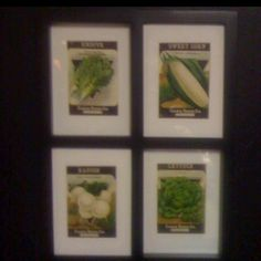 Old seed packets that I framed.