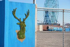 Moss Graffiti: Graffiti ecológico utilizando musgo y las obras de Edina Tokodi