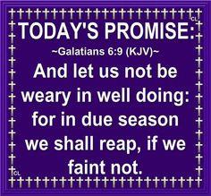 Galatians 6:9 KJV