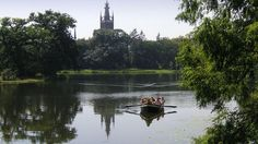 «Парковое королевство» Дессау-Вёрлиц в Саксония-Анхальт (фото)