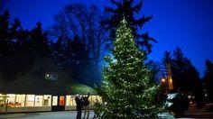 kerst dierenpark