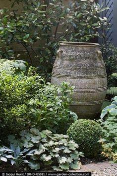 Garden by Tonia B