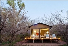 Featuring an outdoor plunge pool Ngama Tented Safari Lodge is located in the Guernsey Private Nature Reserve in Hoedspruit. Ngama Tented Safari Lodge Guernsey Nature Reserve South Africa R:Limpopo hotel Hotels Victorian Bath, Game Lodge, Luxury Tents, Tent Sale, Cabins And Cottages, Camping, Lodges, Gazebo, Safari