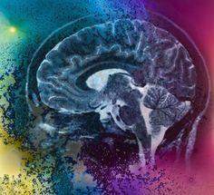 Мысль как причина болезни Душевное состояние влияет на ход болезни, на нашу…
