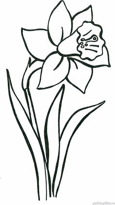 Diy Embroidery Flowers, Simple Embroidery Designs, Printable Flower Coloring Pages, Colouring Pages, Flower Drawing Tutorials, Flower Pattern Design, Flower Video, Art Drawings For Kids, Applique Patterns