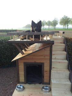 Why is using a dog house a good idea? Most people tend to have the misconception that dog houses are meant for only those dog owners who intend to keep their dogs outside. Pallet Dog House, Wooden Dog House, Dog House Plans, House Dog, Large Dog House, Cool Dog Houses, Pet Houses, Amazing Houses, Dog Rooms