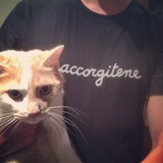 accorgitene ancora... #accorgitene #cat #cats #gatti #clotes #tshirt #typography