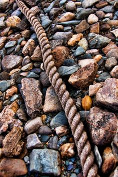 """""""Fit to be Tied"""" ~ Photography by Joel Cyr - Rope on a Rocky Beach, British Columbia."""