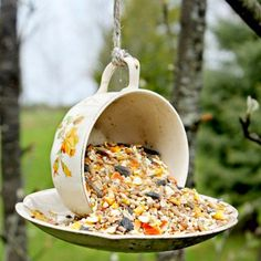 Create this simple, unique and inexpensive to make bird feeder for yourself, or for that bird lover in your life....~~~