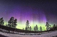Amazing one by 76prins #astrophotography #contratahotel (o) http://ift.tt/2eyAPSB svårt för att bestämma mig för vad jag gillar bäst. Ljuset på sommaren eller mörkret på vintern. Men att frysa det gillar jag inte!  #norrsken #northernlights #auroraborealis #astrophoto #pentax #pentaxk3 #samyang #fisheye #rymden #space #universum #universe #dalarna #sälen #hundfjället #tandådalen #naturephotography #april #visitsweden #visitscandinavia #ig_sweden #stjärnor #stars #stjärnhimlen #natur #nature